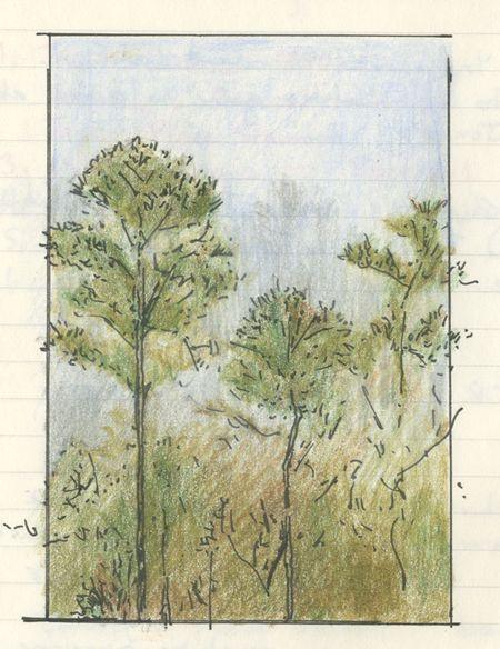 PineTrees_Garner1