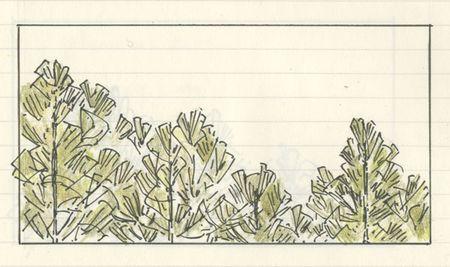 PineTrees_Garner3