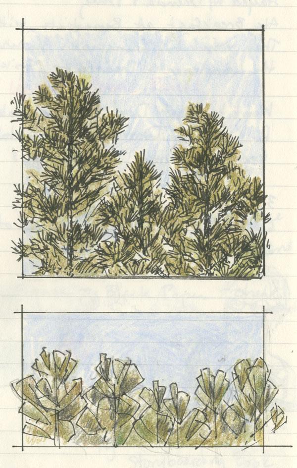 PineTrees_Garner2